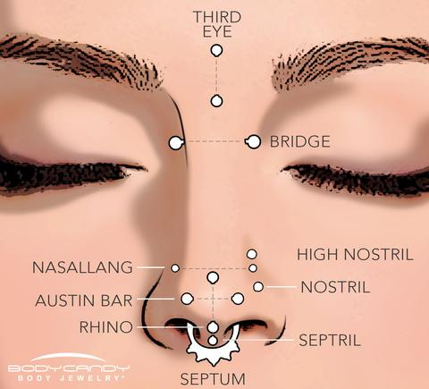 e208d3c79446 Nombres de los diferentes tipos de piercing en la nariz