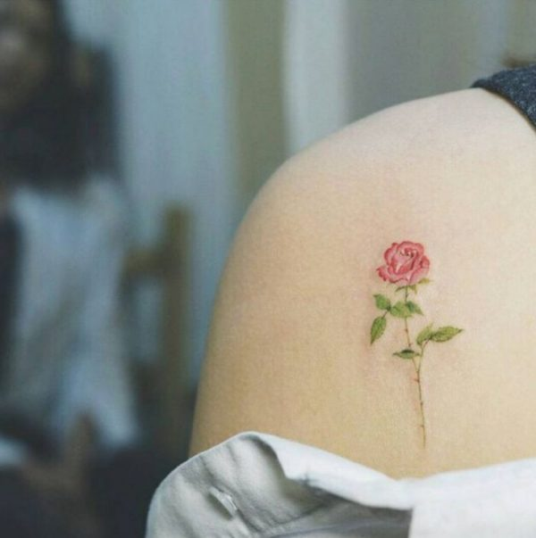 7b089b9828aa6dbd396f4f016f4f8f8c Shoulder Tattoo Rose Tatuajes